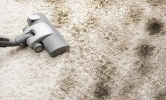 Чим можна швидко почистити ковролін?