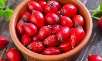 Чистка печінки шипшиною: методи відновлення