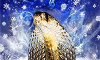 Гороскоп на 2013 рік змії загальний. Що кажуть зірки про наступаючому рік змії
