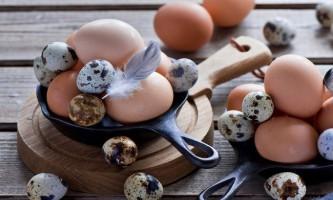 Холестерин в яйцях: міф чи реальність? Курячі або перепелині?