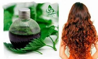 Як мити і полоскати волосся кропивою