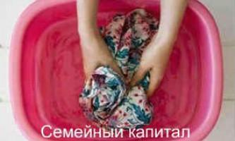 Як вивести цвіль з одягу