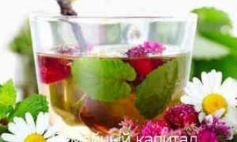 Які трави пити при застуді