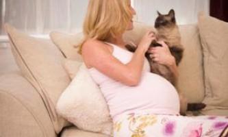 Лишай при вагітності: ознаки, наслідки та лікування
