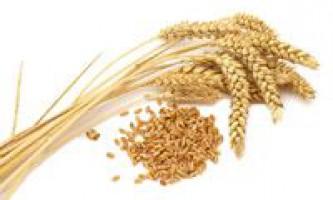 Масло зародків пшениці для вій