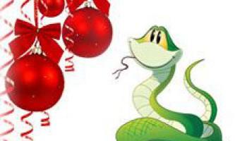 Новий 2013 рік змії. Чого нам чекати в новому 2013 році