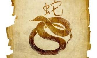 Новий 2013 рік змії: як правильно зустрічати?