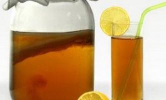 Користь чайного гриба для схуднення