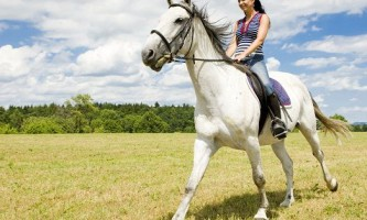 Користь і шкода від катання на конях
