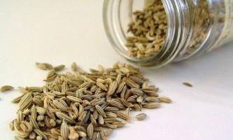 Застосування і лікувальні властивості насіння кропу