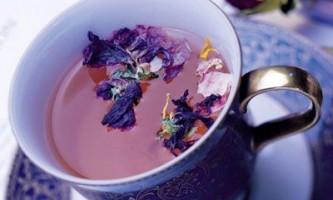 Синій чай. Властивості, як заварювати і пити зелений чай