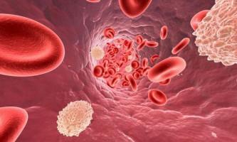 Статини від холестерину: користь і шкода застосування