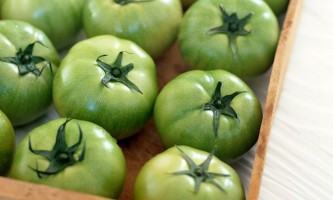 Зелені помідори проти варикозу вен: способи застосування