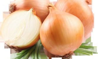 Жиросжигающая дієта цибульний суп для схуднення